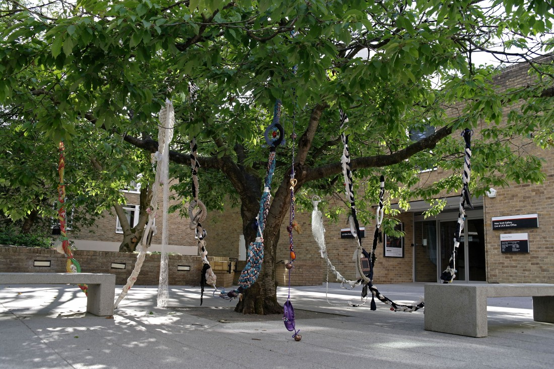 Wishing Tree - outside Peter Scott Gallery, Lancaster University