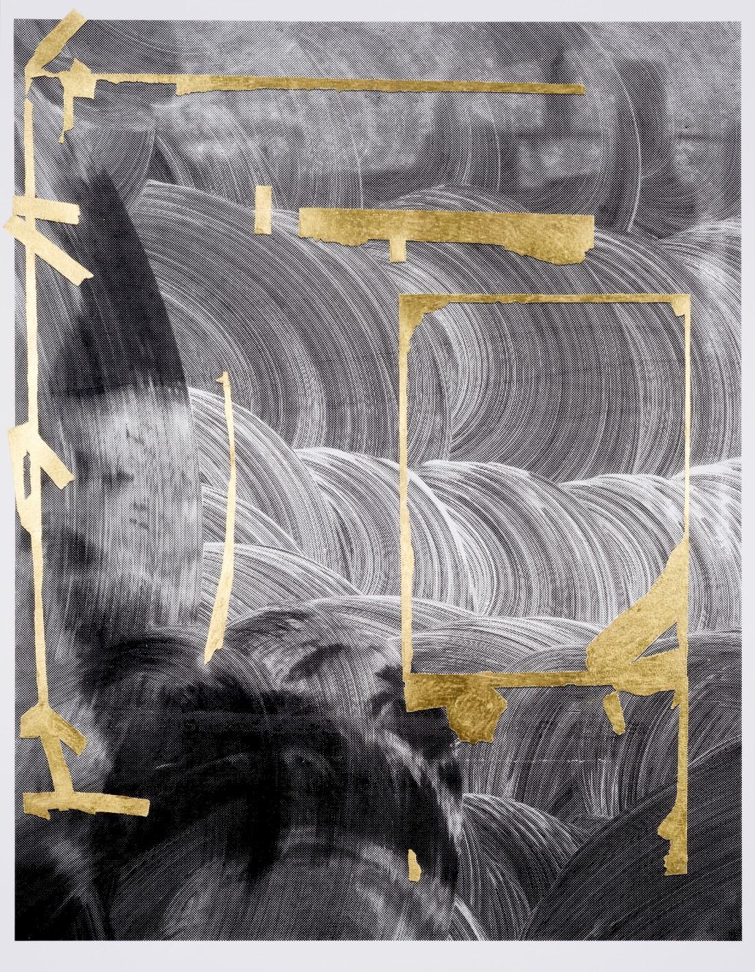 Coanis 2014 screen print, (23 karat) gold leaf on paper